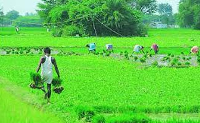 Telangana Government Granted 51,000 Crore For Rythu Bandhu Scheme - Sakshi