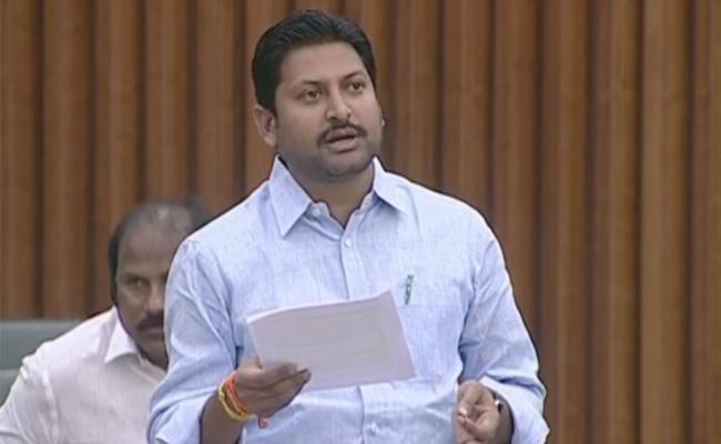 Abbaiah Chowdary Slams TDP MLAs Over Action In AP Assembly - Sakshi