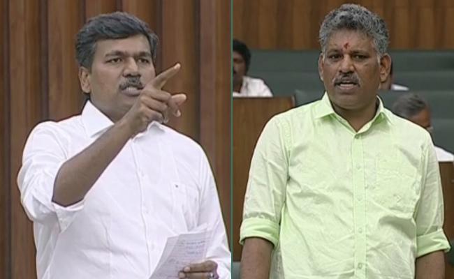 Duddukunta Sreedhar Reddy Thanked CM YS Jagan Over Rythu Bharosa In Assembly - Sakshi