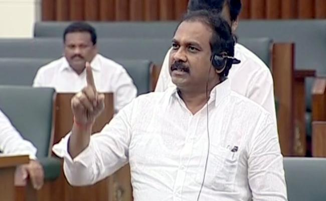 AP Minister Kannababu Fire On TDP Assembly Special Session - Sakshi