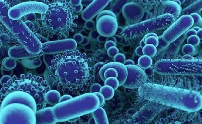 Kerala Sets Screening Centres in Airports To Detect Coronavirus - Sakshi