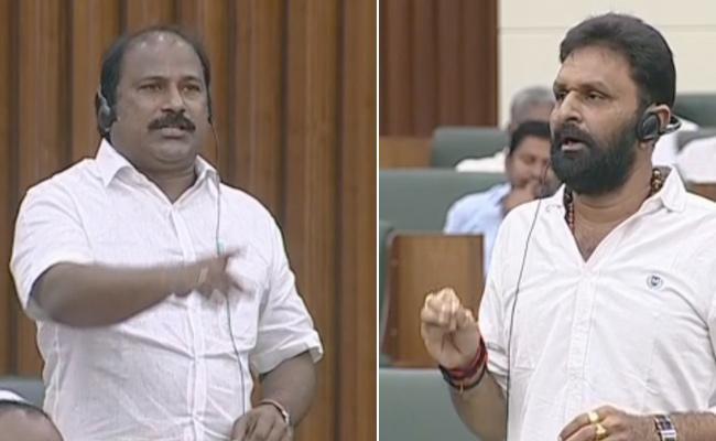 Kodali Nani Fires On Chandrababu TDP MLAs Behavior In Assembly - Sakshi