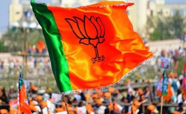 BJP Good Results In Telangana Municipal Elections - Sakshi
