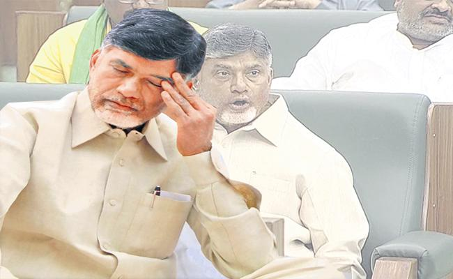TDP leaders say that Chandrababu and TDP MLAs intentionally did not come to the House - Sakshi