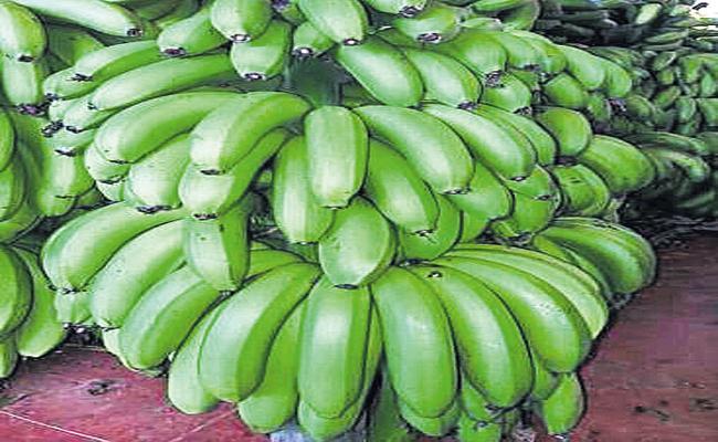 Ananthapur Banana To Arab Countries - Sakshi