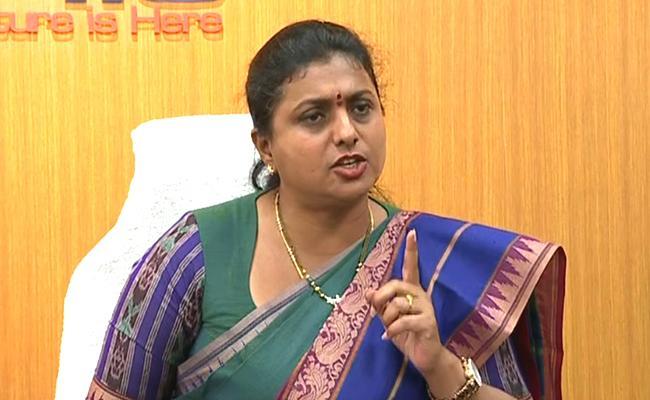 TDP Leaders Only Attack On Pinneli Rajakrishna Reddy Sasy RK Roja - Sakshi