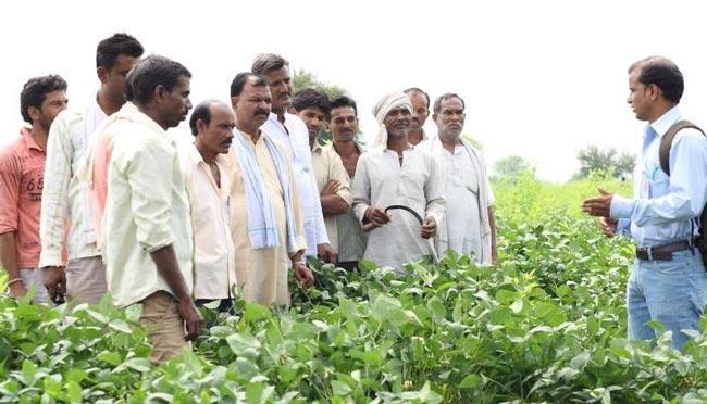 Training of mango farmers at Vijayawada on 22 - Sakshi