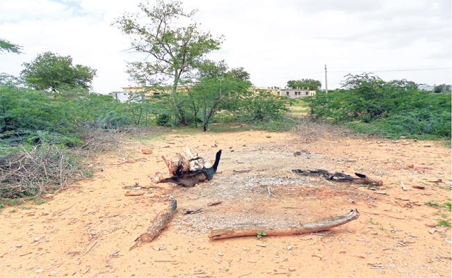 Crematorium Shortage in Prakasam District Villages - Sakshi