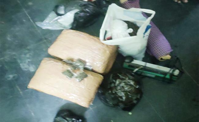 Cardon Search in Kuppam Find Alcohol And Marijuana - Sakshi