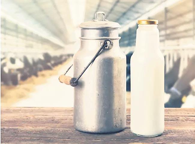 organic milk production methads - Sakshi