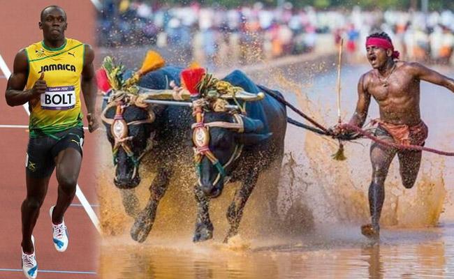 Karnataka Man Runs Faster Than Usain Bolt In Ancient Buffalo Race - Sakshi