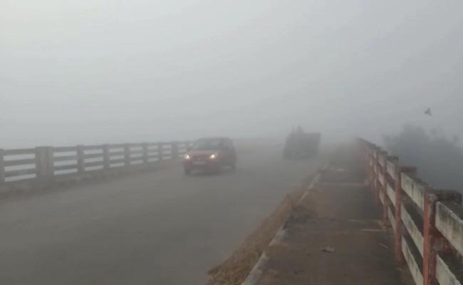 Fog Disrupts Flight Operations At Gannavaram Airport - Sakshi