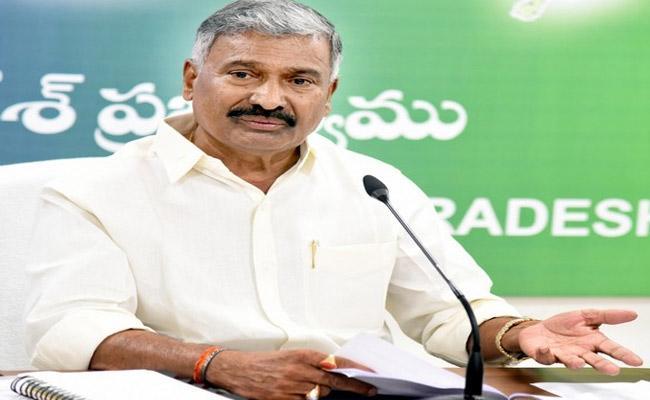 Minister Peddireddy Ramachandra Reddy Comments On Chandrababu - Sakshi