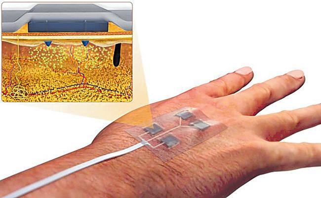 Harvard Medical School Scientists Innovate New Technology - Sakshi