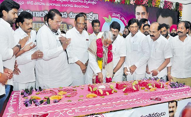 TRS Leaders Celebrates CM KCR Birthday Celebrations In Telangana - Sakshi