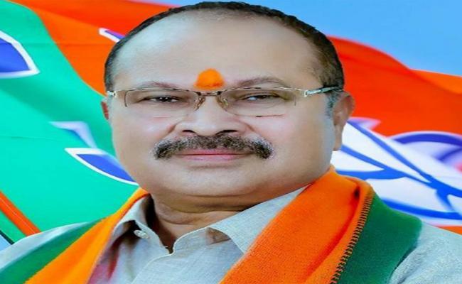 Kanna Lakshminarayana Comments On AP Capital - Sakshi