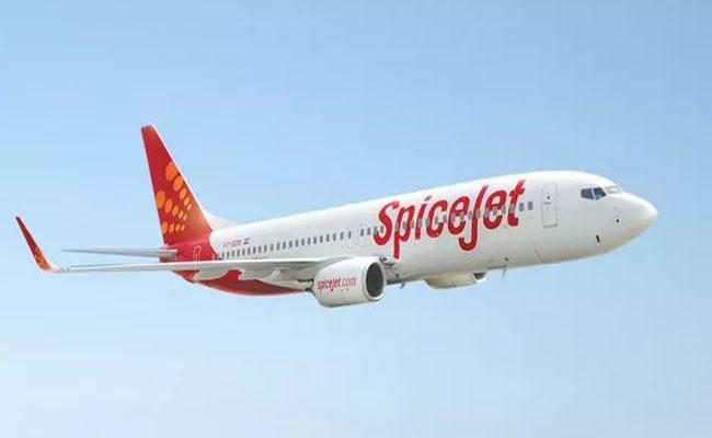 SpiceJet launches 20 new flights from March 29 - Sakshi