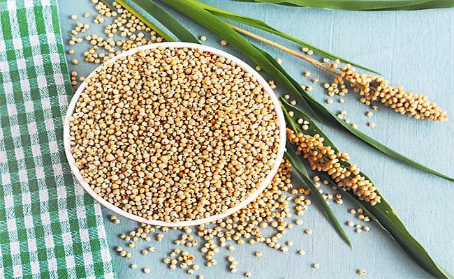 Sorghum Rotis Good For Health - Sakshi