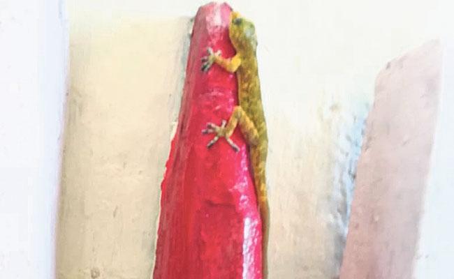Again Golden Lizard (Bangaru Balli) spotted in Tirumala Silathoranam - Sakshi