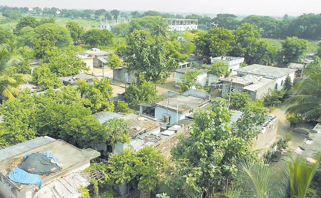 District Collectors Focused On Village Development Works In Telangana - Sakshi