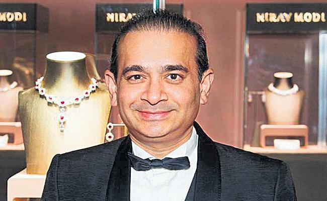 Saffronart Auction to Nirav Modi Luxury goods - Sakshi