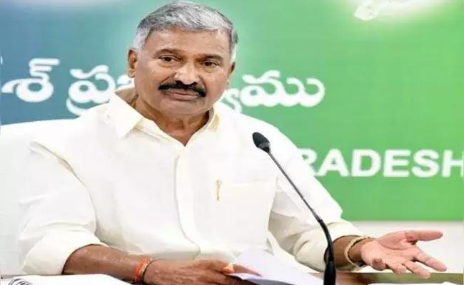 Minister Peddireddy Said AP Government Has Set A Record In The Distribution Of Pensions - Sakshi