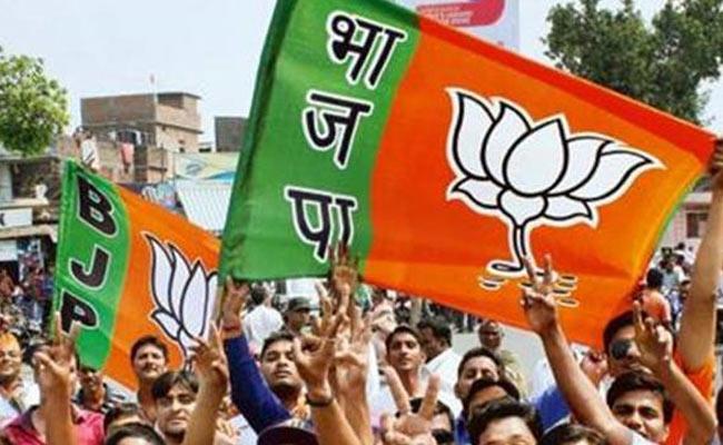 Pentapati Pullarao Guest Column Bihar Political Importance Of BJP - Sakshi
