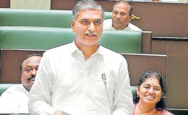 Harish Rao Briefly Discuss On Telangana Budget In Assembly - Sakshi