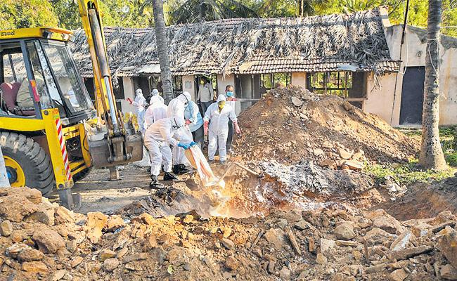 Bird Flu At Mysore Karnataka - Sakshi