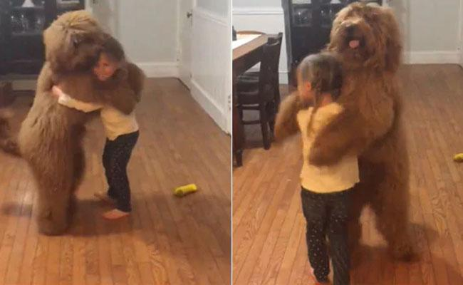 Viral Video : Puppy And Girl Dance - Sakshi