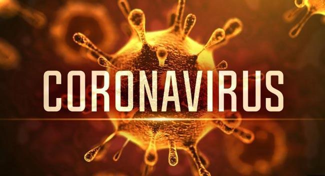 15100 Peoples Lifeloss In The World Due To Coronavirus - Sakshi