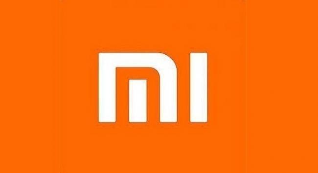 Xiaomi to donate lakhs of N95 masks across Delhi And Punjab - Sakshi