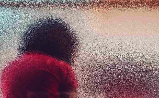 Molestation Assault on Pregnant Woman in Chittoor - Sakshi