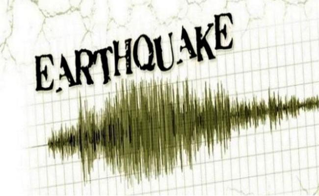 Earthquake Hits Parts Of Indonesia Amid Corona Outbreak - Sakshi