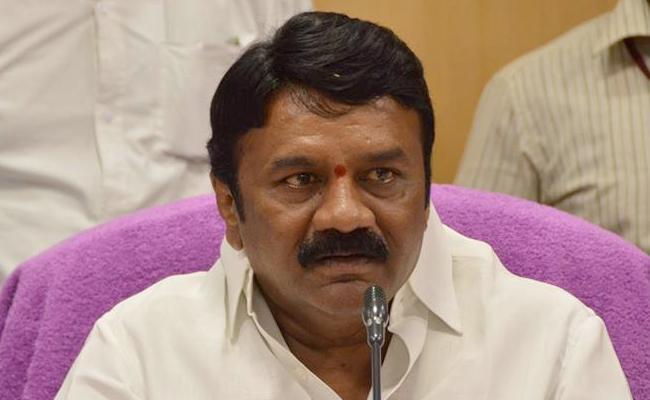 Talasani Srinivas yadav Warns To Meat Retailers Over Higher Prices - Sakshi