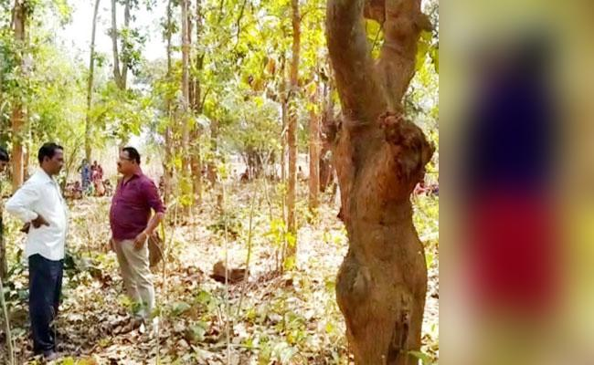 Love Couple Suicide Over Doubt In Orissa - Sakshi