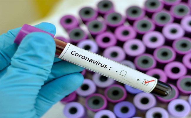 12 Corona Positive Cases Registered In Telangana - Sakshi