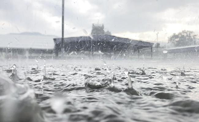 Huge Rainfall in several districts across Andhra Pradesh - Sakshi