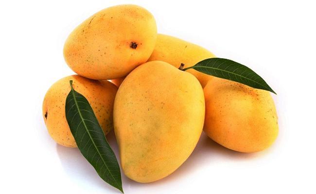 Horticulture Department Starts Mango Fruits Home Delivery Hyderabad - Sakshi