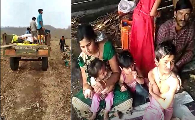Amid Corona Threats People Set To Live At Farm Lands In Adilabad - Sakshi