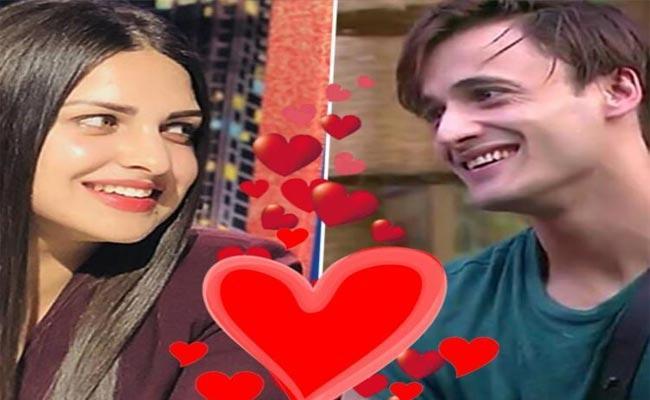 Asim Riaz Heart Winning Tweet About Girlfriend Himanshi - Sakshi