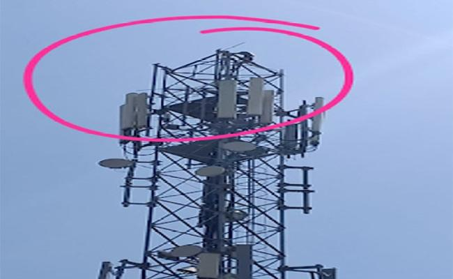 Young Man Protest Over Climbs Cell Tower In Chittoor - Sakshi