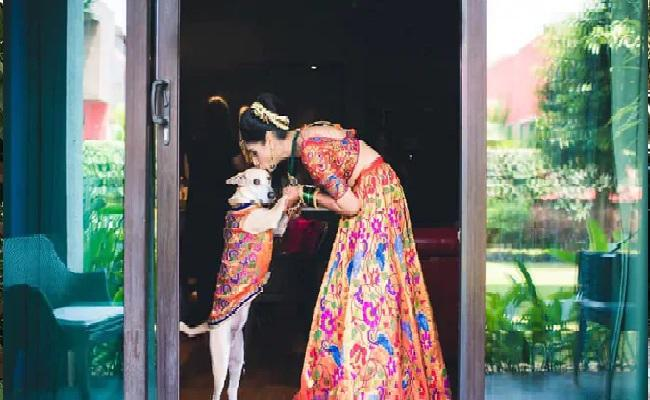 Canine Trainer Mitali Salvi About Her Relationship With Pet Dog Panty - Sakshi