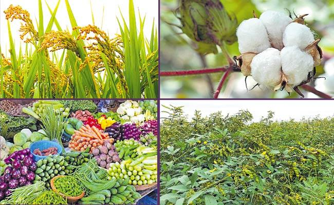 CM KCR Announces New Agriculture Policy In Telangana - Sakshi