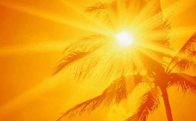 AP Disaster Management Advice To People On Summer - Sakshi