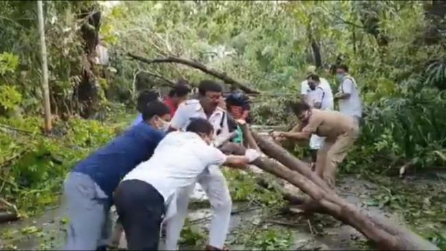 Sourav Ganguly Praise Kolkata Police He Shift fallen Trees Cyclone Amphan - Sakshi