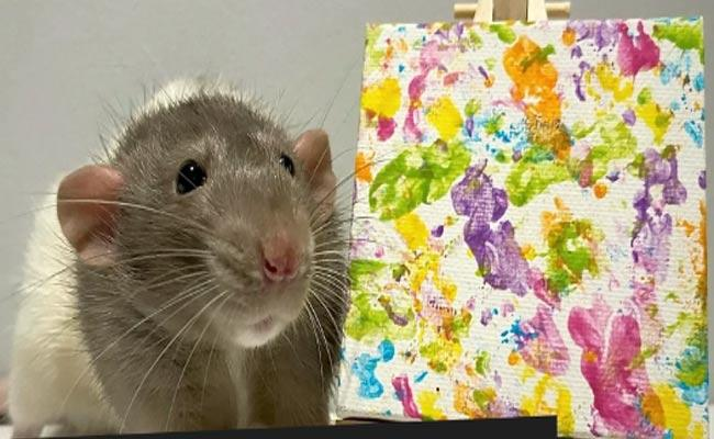 Viral: Rat painting Have Earned Over 1000 Pounds - Sakshi