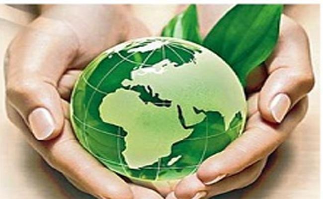 Special Story On International Biodiversity Day In Telangana - Sakshi