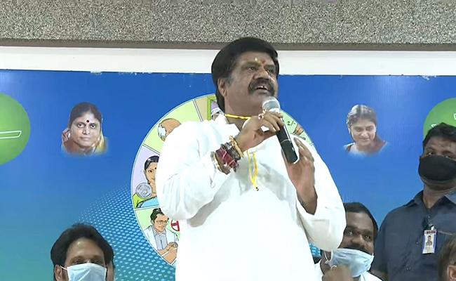 Avanthi Srinivas Talks In Press Meet Over YSRCP Anniversary In Visakhapatnam - Sakshi
