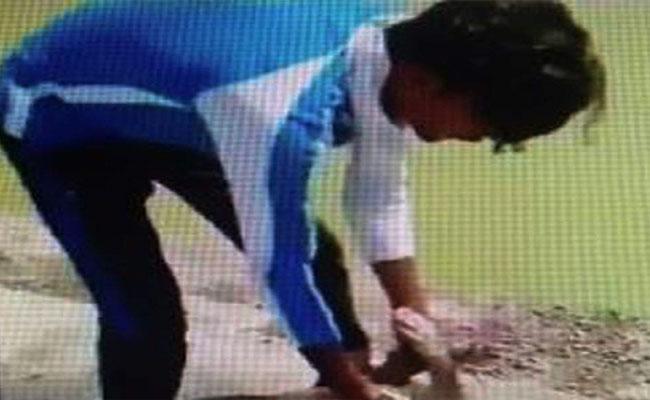 PETA Serious On Boys Who Drowned A Dog - Sakshi